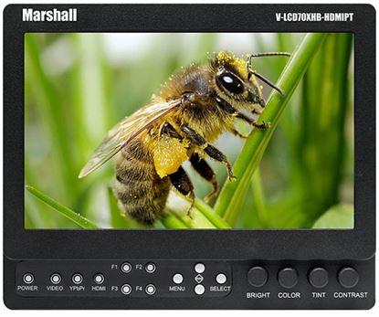 Picture of Marshall camera-top monitor V-LCD70XHB-HDMIPT